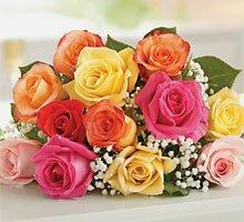 белые, розовые, персиковые розы